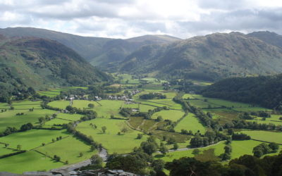 A lost stone circle in Borrowdale?