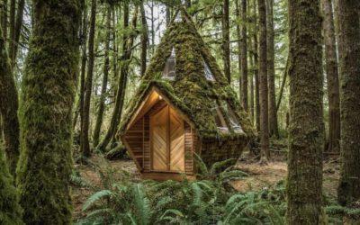 A Hut I Call My Own